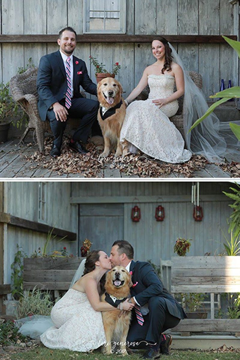 Bride and Groom with Dog | Filbert B&B, Danielsville, PA