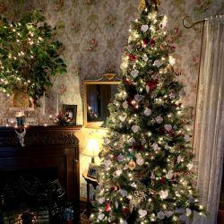 Christmas Tree | Filbert B&B, Danielsville, PA